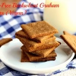 Gluten-Free Buckwheat Graham Crackers (Vegan)