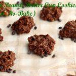 Frozen Peanut Butter Cup Cookies (Vegan, No-Bake)