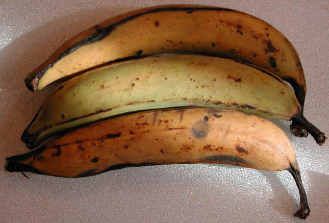Shallow-Fried Plantains