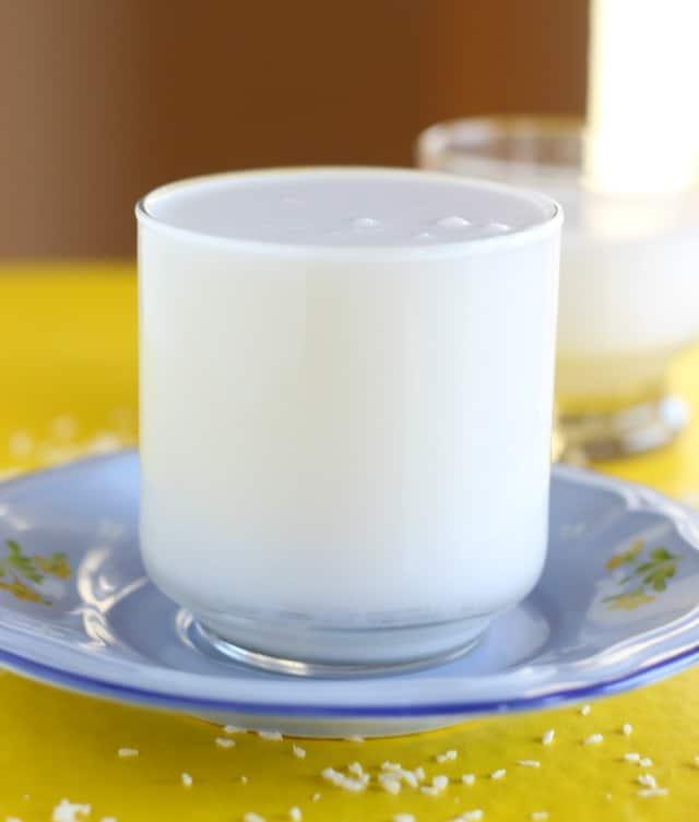 2-ingredient coconut milk without gums