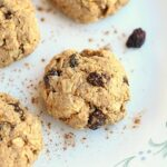 Healthy Oatmeal Raisin Cookies (Low Sugar)