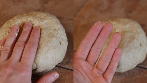 Raw pizza dough